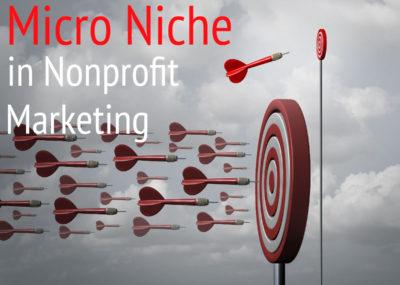 Micro niche in nonprofit marketing